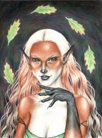 Foxylady Andrea Stewart 2002