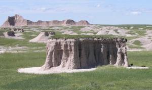 Prairie Grass Island