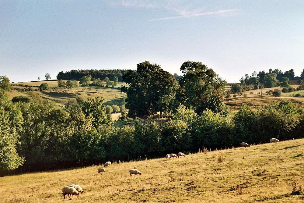 Warwickshire farmland.