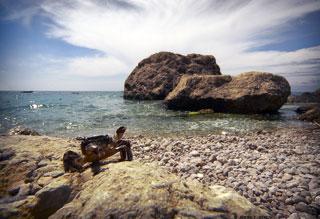 """""""Rocky beach"""" © Andrey Jitkov"""
